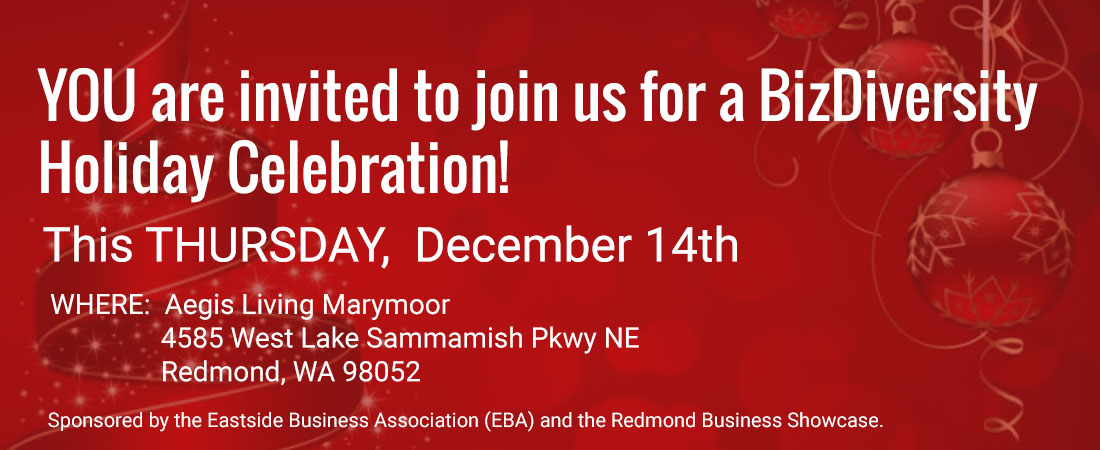 join-us-for-a-bizdiversity-holiday-session-1100b430
